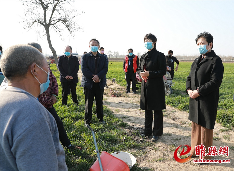 吴海燕到部分乡镇调研农业生产和疫情防控工作